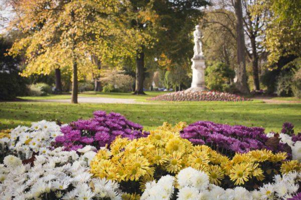 Der Grünplatz Jean Cousin im Herbst