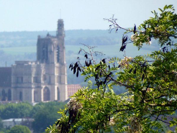 Aussicht auf Sens' Kathedrale von Saint-Martin-du-Tertre